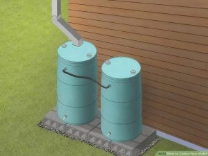 Install a rainwater collection system