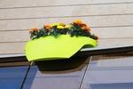 rotated flowerpot