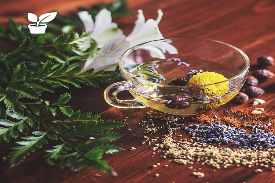 Herbal remedies solution to your medical problem-common home remedies. in this guide you'll find all natural herbal remedies,such as: diy flu remedies,eczema remedies,natural weight loss remedies,remedies for sleeplessness and a lot more. all are herbal remedies diy and herbal remedies recipes