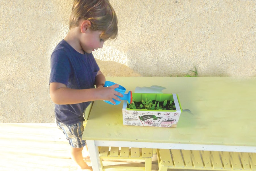 kids herb garden ideas – introduction herbs for kids