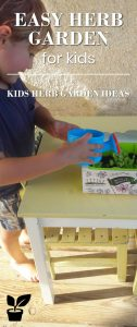 kids herb garden ideas-introduction herbs for kids.easy diy kids garden projects! (besides my beautiful son picture) you'll learn about great kids garden projects backyard. with a simple kids garden kit, you'll have kids herb fun garden activities even for young children. with a kids garden tools outdoor play, your children will learn how to grow kids garden vegetable or kids garden herb.at the end you have some example for kids garden kit gift ideas. #kidsHERB#kidsGARDEN#gardenTOOL#herbKIT.