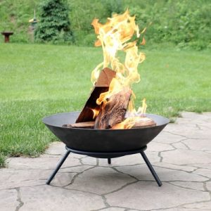Sunnydaze Raised Portable Fire Pit Bowl, Outdoor Wood Burning Patio Firepit with Sturdy Stand, Cast Iron.