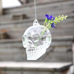 air plants skull