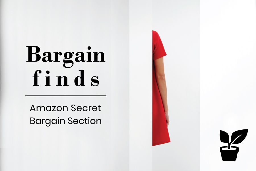 bargain finds - Amazon Secret Bargain Section try it out