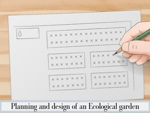 Planning and design of an Ecological garden