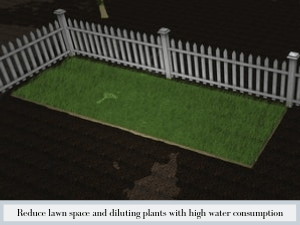 Reduce lawn space and diluting plants with high water consumption and high maintenances