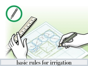 The basic rules for irrigation according to the water consumption of the plant