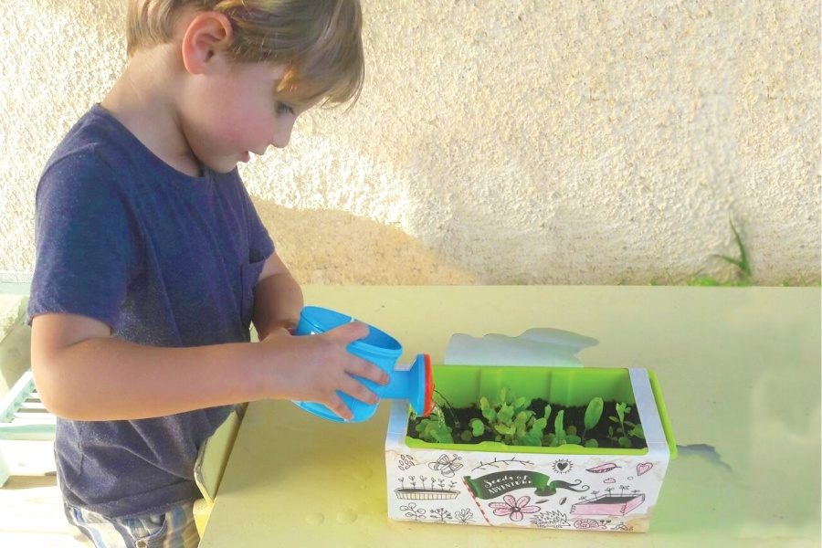 kids herb garden ideas - introduction herbs for kids