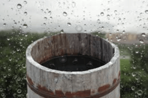rain barrel benefits - from Environmental awareness to reduce water bill!