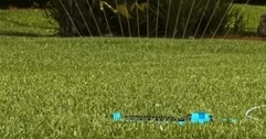 how long to water lawn with oscillating sprinkler? - the right way!
