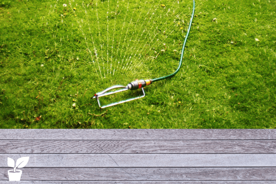 how long to water lawn with oscillating sprinkler? -this article will teach you a few ways you can know if you are watering your lawn long enough with an oscillating sprinkler.how to Perfect You're oscillating sprinkler Timing, and the oscillating sprinkler water advantages and disadvantages. lawn watering tips|lawn watering schedule|lawn watering system sprinkler|lawn watering ideas plants|lawn water grass|water your own grass lawn|grass watering. grass#lawn#watering#oscillating#sprinkler#yard.