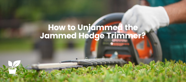 How to Unjammed the Jammed Hedge Trimmer?