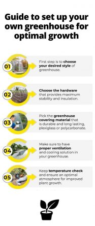Guide to set up your own greenhouse for optimal growth