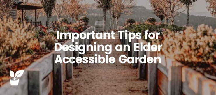 Important Tips for Designing an Elder Accessible Garden