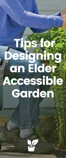 Important Tips for Designing an Elder Accessible Garden - This article provides valuable tips for designing an elder accessible garden to enjoy a flowering garden, such as reducing bending, crouching, and other movements that could be painful #accessiblegarden #accessiblegardening #wheelchairgardening #seniorgardening accessible gardening for all | wheelchair accessible gardening | accessible garden beds | easy access garden bed | easy access raised garden beds | gardening for wheelchair | accessible garden design | wheelchair accessible garden design | senior gardening ideas | senior garden design